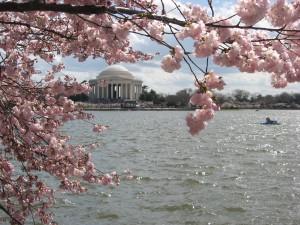 spring-2009-0081